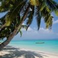 Havelock Island spiaggia n 5
