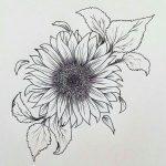 Disegno per tatuaggio fiore di girasole simbolo di felicita e gioia