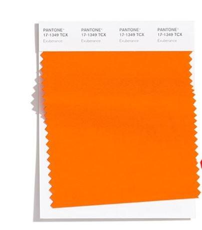 Colore Moda Inverno 2020 2021 Pantone Exuberance