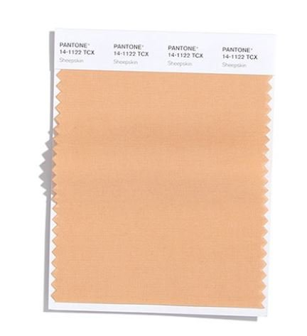 Colore Moda Inverno 2020 2021 Pantone Sheepskin
