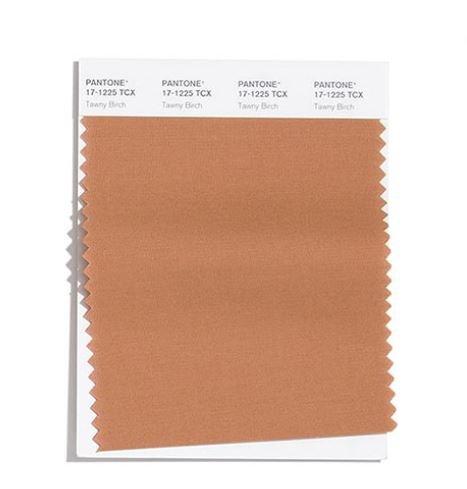 Colore Moda Inverno 2020 2021 Pantone Tawny Birch